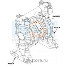 """Насос Husky 515 раздельный впуск из ацеталя – 3/4"""" двойной впуск ацеталь/Buna Graco"""